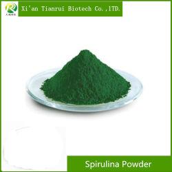 Usine naturelle de grande qualité d'alimentation de la spiruline en poudre