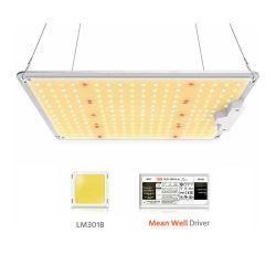 Panel de placa Quantum ajustable de alta potencia de espectro completo Luz alta Luz de crecimiento de LED de tira flexible lineal Bay (300W/400W/600W/700W/800W/900W/1000W)