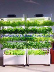 La Chine Fabricant de matériel agricole Système de culture hydroponique de plantes en serre
