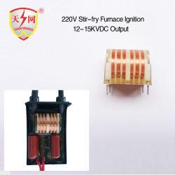 Ontsteking voor de Transformator van de Delen van het Kooktoestel van de Oven/van het Gas van het Fornuis