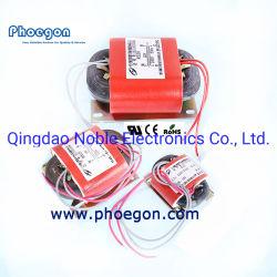 Transformateur de base de la série R pour DIY Audio hi-fi ou transformateur de type industriel