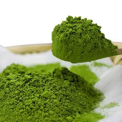 Jas/EU/Nop Certified 100% Matcha orgânicos naturais Chá Verde