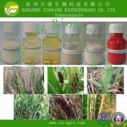 Altamente eficaz fungicida tebuconazol (95%80%TC, WP, el 80%25%WDG WDG, el 25%EC, 430g/lSC, de 60 g/l de FS, EW, 25%12%12%CS, ME).