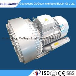 Zwei Antreiber-hohe Vakuumpumpe für CNC-Fräser (LD110H43R28)