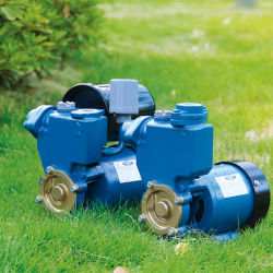 PS Series Booster Micro Cast-Iron Peripheral Votex Domestic Garden Irrigation Surface Self-Prming Home-Use Self-Suction Clean Water Pump