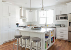 Home Remodell White Shaker Kitchen Bath Cabinets