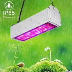 Haut étanche Lumière 150W une serre de tomates à l'intérieur barre lumineuse à LED