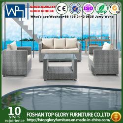 Jeux de salon en plein air 3+1+1 Patio meublé de canapés de meubles de jardin avec coussin Tg-Jw803