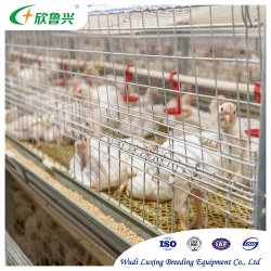 자동 가금류 농장 장비 레이어 브iler 배터리 및 케이지 닭고기 키우기를 합니다