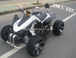 Cee / Coc 250cc Sports Racing ATV