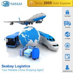 Logistics Company/Seeladung-Verschiffen/Versandbehälter/Verschiffen-Agens/Schifffahrtsgesellschaft/Seefrachtsätze von China zur Blechdose, Apapa, Lagos, Onne Nigeria