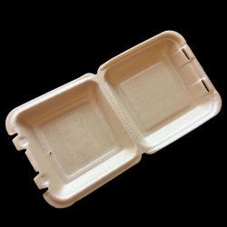 Espuma biodegradável descartável Recipiente Alimentar Takeaway