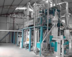 Berufsmais 50t, der Maschinerie-Mais-Prägepflanzenmehl aufbereitet