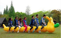 PVC 방수포 재미 옥외를 위한 팽창식 모충 관 게임
