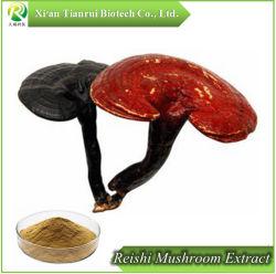 Ganoderma lucidum de polvo de esporas de hongos Reishi extraer