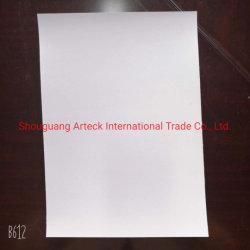 Ningbo Fbb/caja de la placa de plegado/C1s de la placa de marfil