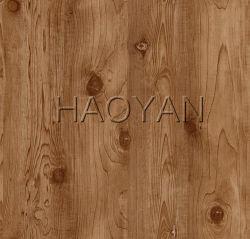 خشبيّة تصميم [بفك] يكسى فولاذ لأنّ باب لوح