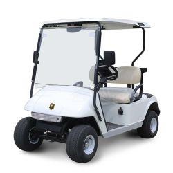 La Chine offre de prix d'usine 2 places la voiturette de golf pour la vente (DG-C2)