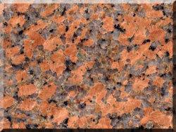 G562 Maple Granite Tile Fujian de granit rouge