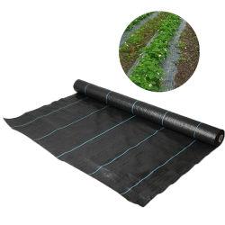 stuoia a terra della membrana tessuta pp di controllo di Weed del tessuto del coperchio di protezione 100GSM del giardino UV di agricoltura
