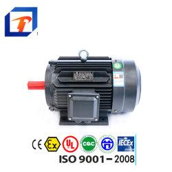 Motore elettrico a tre fasi per le pompe della STAZIONE TERMALE del raggruppamento (0.18kw-5.5kw)