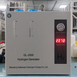 Bescheinigung-hoher Reinheitsgrad-PEM-Wasserstoff-Generatoren des Cer-Ql-2000 für Kraftstoff-Zellen-Verbrauch
