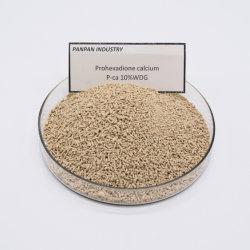 Contrôle de PGR Prohexadion Calcium de plus en plus vigoureuse du prohexadione calcium 10