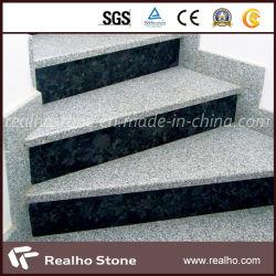 L'extérieur naturel Outdoor gris/blanc/noir Granite de l'étape de montage pour cartes d'escaliers en pierre avec musoir