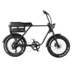 2019 bicicletta elettrica più popolare del motore di azionamento del mozzo del mackintosh di 48V 1000W/bici elettrica