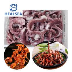 Fornire i tentacoli di calamari giganti congelati di tutte le dimensioni