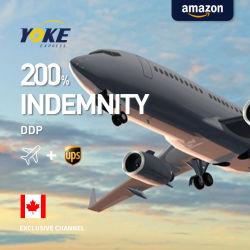 Материально-технического обеспечения транспорта, система транспортировки контейнеров в Канаде, Professional поставки DDP, сжатого воздуха, оператор
