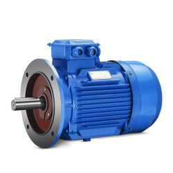 플랜지 설치 유형 3 단계 비동시성 AC 전동기