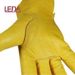 冬のグローブ 3 m 断熱裏地付き耐寒性カウグレインレザー ドライバー用手袋
