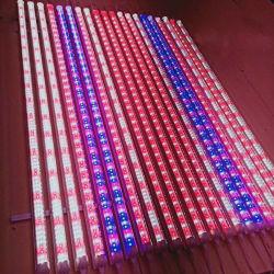 Poupança de energia variável T8 Lâmpada de crescimento de plantas de tubo de luz para as emissões de Lm-LED luz crescer