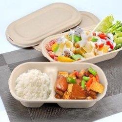 Moldeado pulpa Lunch Box/placa/Tabelware