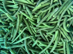 خضار غرينكان حبوب الفاصوليا الخضراء المجمدة من نوع IQF مقطّعة بالفاصوليا الخضراء