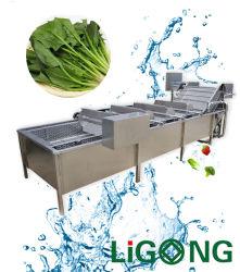 기계장치를 가공하는 산업 과일 잎 식물성 청소 세탁기 및 씻기