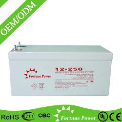 Bester Verkaufs-Solarstraßenlaternemit Batterie-Backup 12V250ah