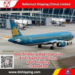 インドネシアジャカルタSoekarno-Hatta空港への中国からの航空貨物の出荷か広州またはシンセンまたは香港