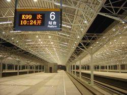 Gare de structure métallique/construction en acier (SS-155)