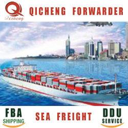 Hoogste 10 Forwarders van tarieven Fba van Amazonië en Lucht die LCL van China verschepen aan Overzeese Vracht Hongkong Canada