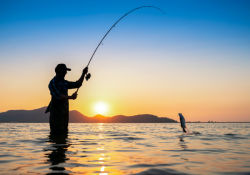 8 trefoli colore giallo-fluoruro pesca PE super forte e liscia Affronta