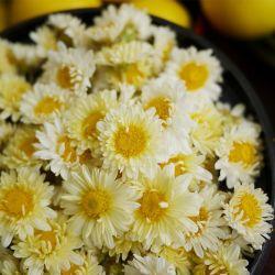 Низкое потребление калорий дикой сушеные Улучшение зрения Chrysanthemum цветок