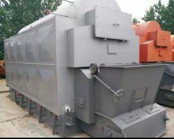caldaia a vapore infornata carbone della griglia della catena 4t usata per la fabbrica dell'alimento