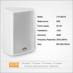 drahtloser Bluetooth und WiFi Wand-Lautsprecher