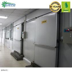 De bevroren Filets van Vissen voor van de het vlees-Gevogelte van de Verkoop het Ontwerp van de Koude Zaal van de Koude Zaal van het Laboratorium van Singapore van de Levering Koude Opslag