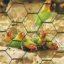 Yq polyvalent enduit de PVC Acier hexagonal Wire Mesh Clôture de compensation