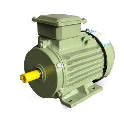 CE 認定、 Ye3 0.75kw 三相電動 AC モータ