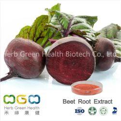 천연 식물 추출물 혈압을 낮추기 위한 비트 추출물 저혈압 허브