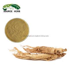 天然エキス「天然」 10% 〜 80% Ginsensoside Panax Ginseng Root 抽出